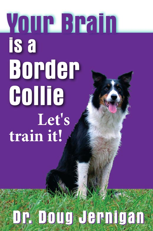 BorderCollie-cover-fin-revk
